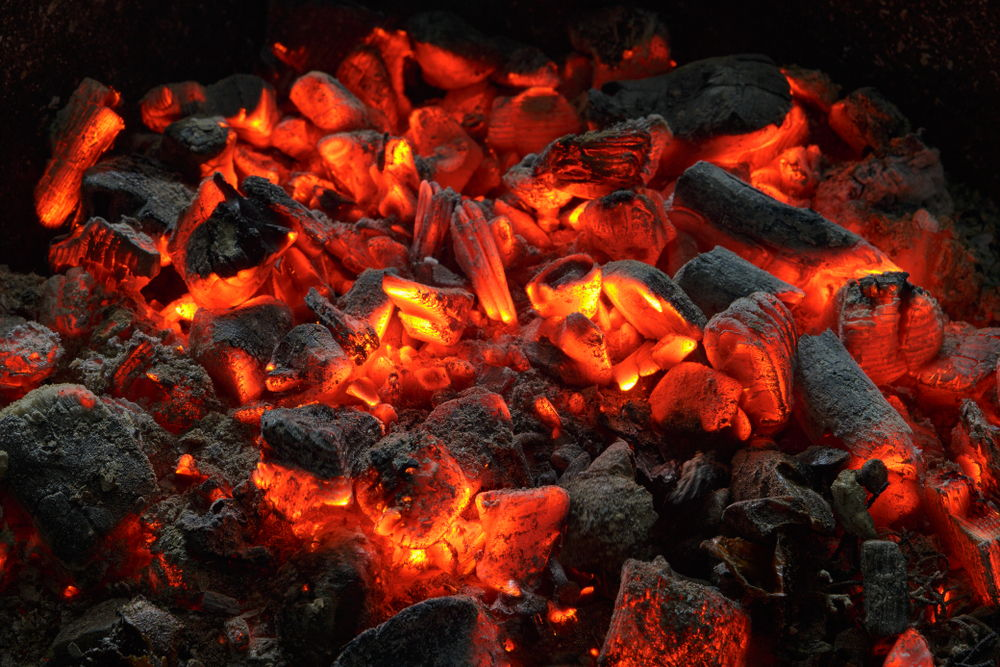 carbónes saiz