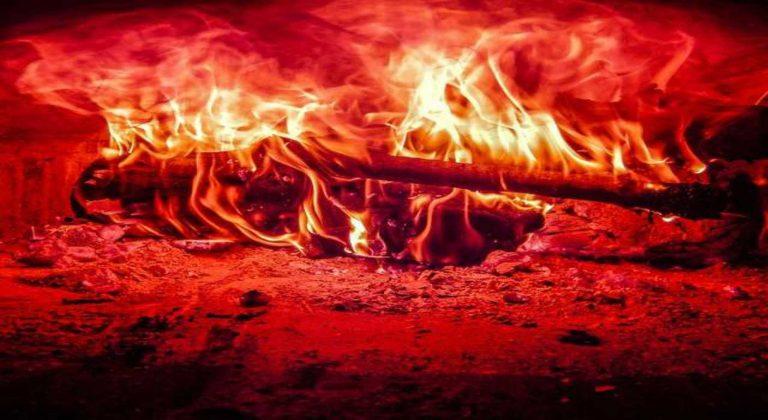 leña ardiendo
