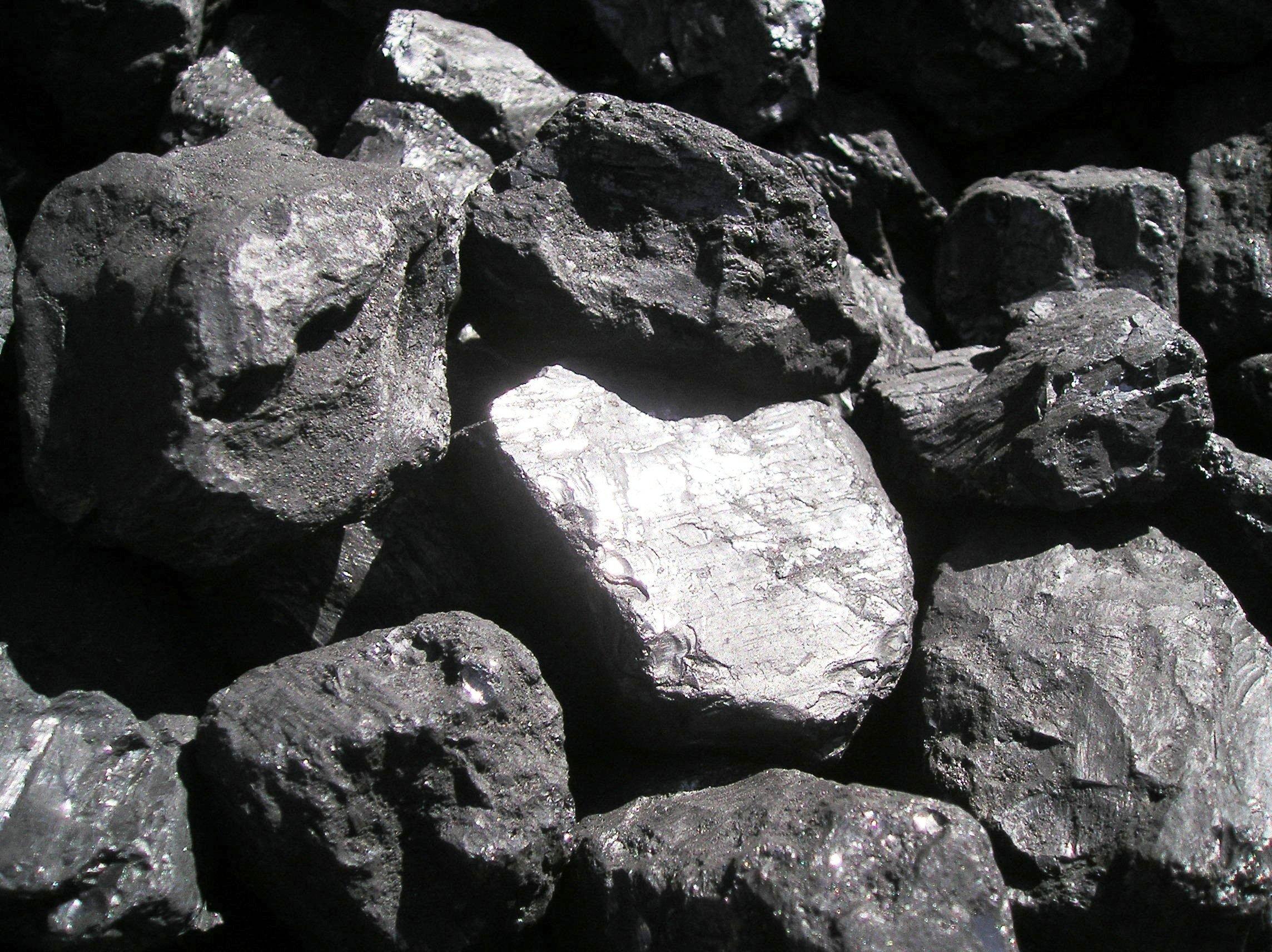 venta de carbón para barbacoa